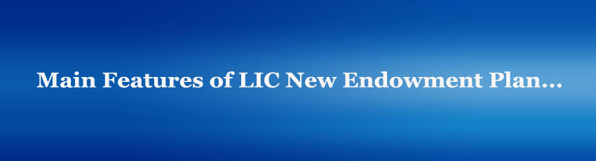 LIC New Endowment Plan features