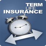 Lic Term Insurance image